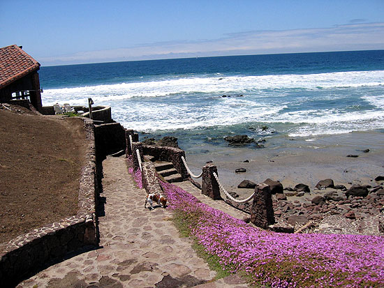 Discover Rosarito Beach We Found La
